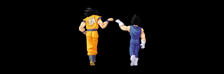 Goku-And-Vegeta-728x242.jpg
