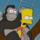 monkeyping