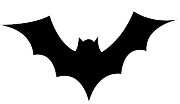 bat bag.jpg